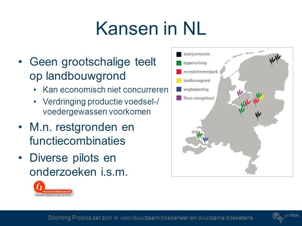Kansen in NL Geen grootschalige teelt op landbouwgrond