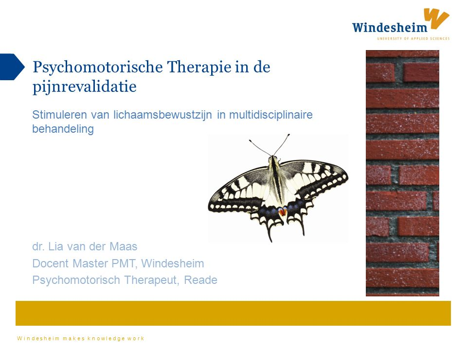 Psychomotorische Therapie in de pijnrevalidatie