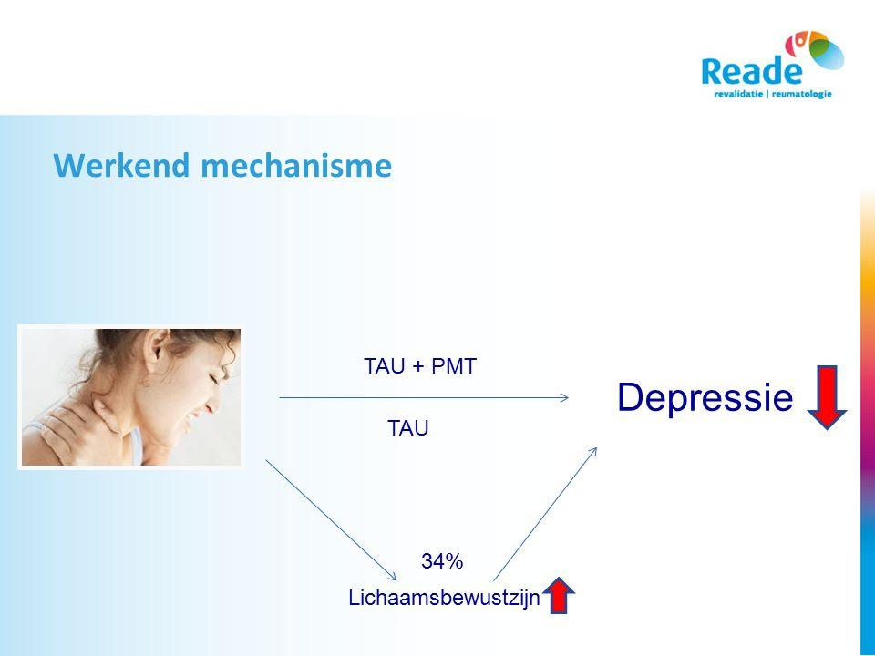 Werkend mechanisme TAU + PMT Depressie TAU 34% Lichaamsbewustzijn