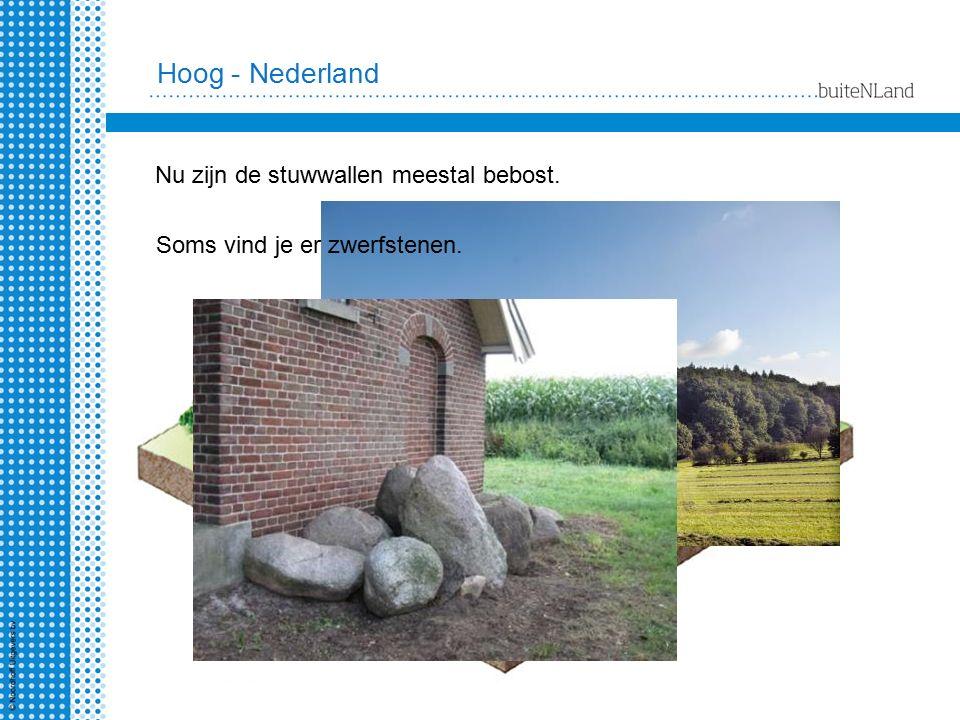Hoog - Nederland Nu zijn de stuwwallen meestal bebost.