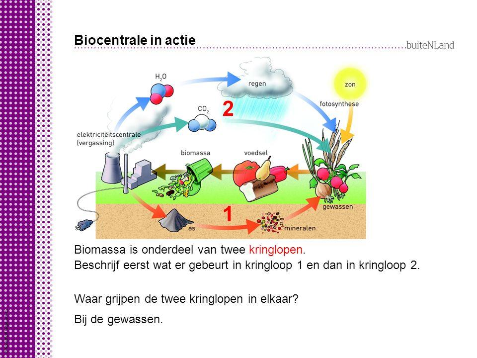 Biocentrale in actie 2. 1. Biomassa is onderdeel van twee kringlopen. Beschrijf eerst wat er gebeurt in kringloop 1 en dan in kringloop 2.