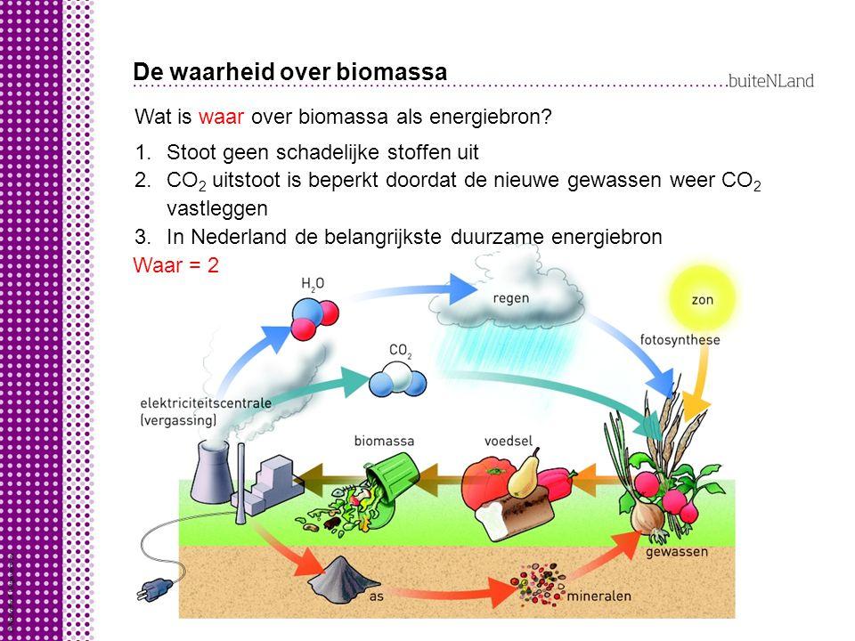 De waarheid over biomassa