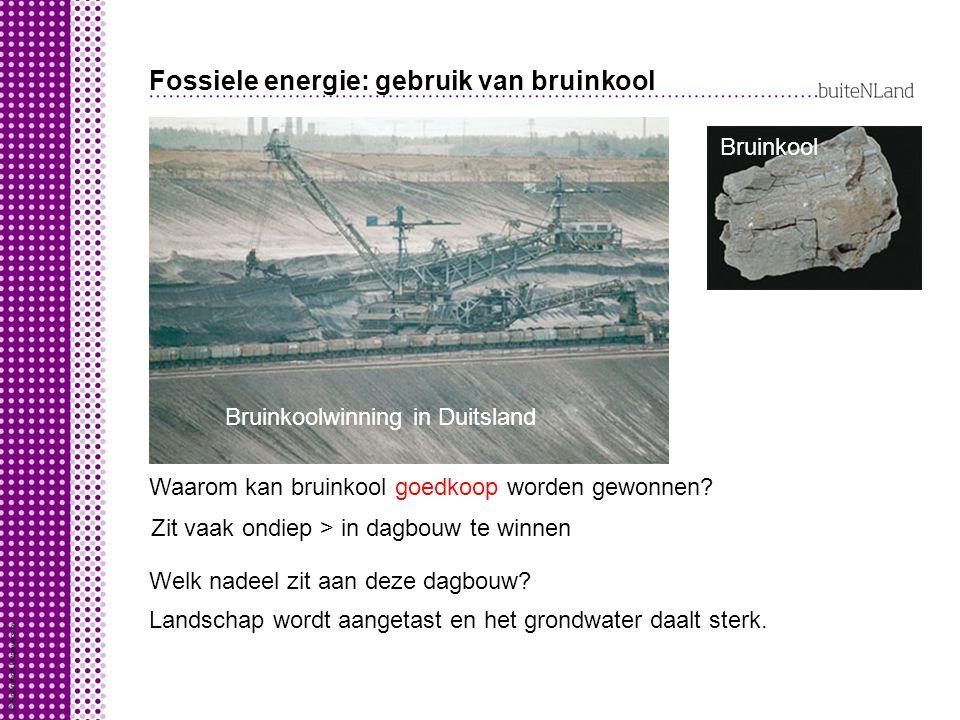 Fossiele energie: gebruik van bruinkool