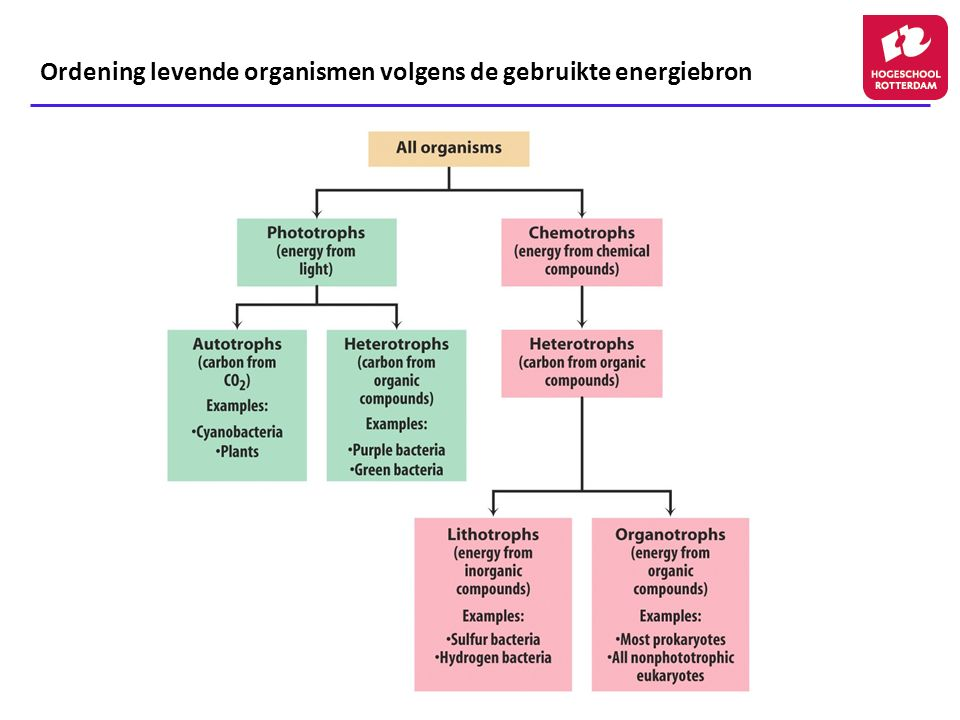 Ordening levende organismen volgens de gebruikte energiebron