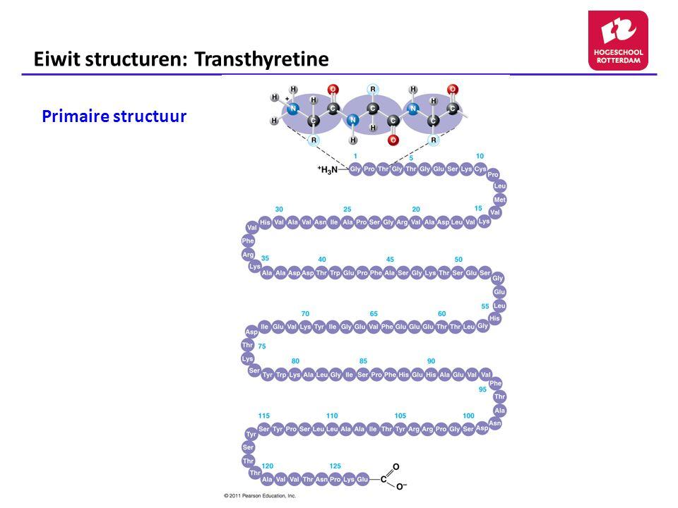 Eiwit structuren: Transthyretine