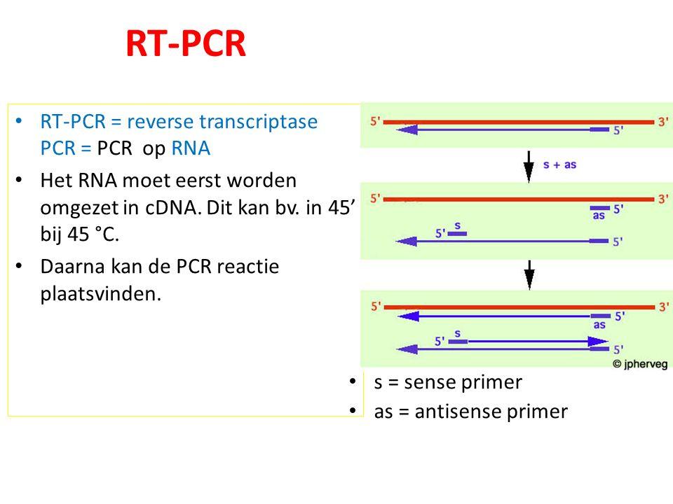 RT-PCR RT-PCR = reverse transcriptase PCR = PCR op RNA