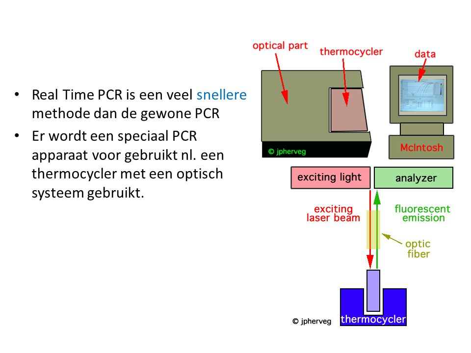 Real Time PCR is een veel snellere methode dan de gewone PCR