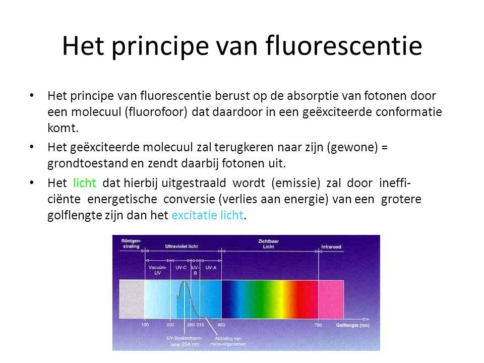 Het principe van fluorescentie