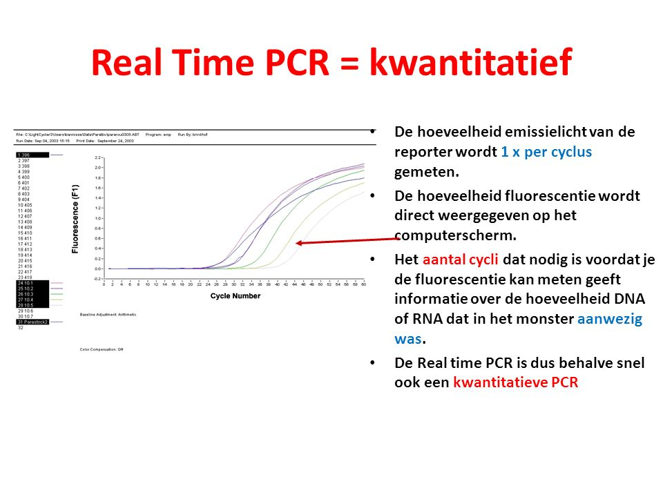 Real Time PCR = kwantitatief