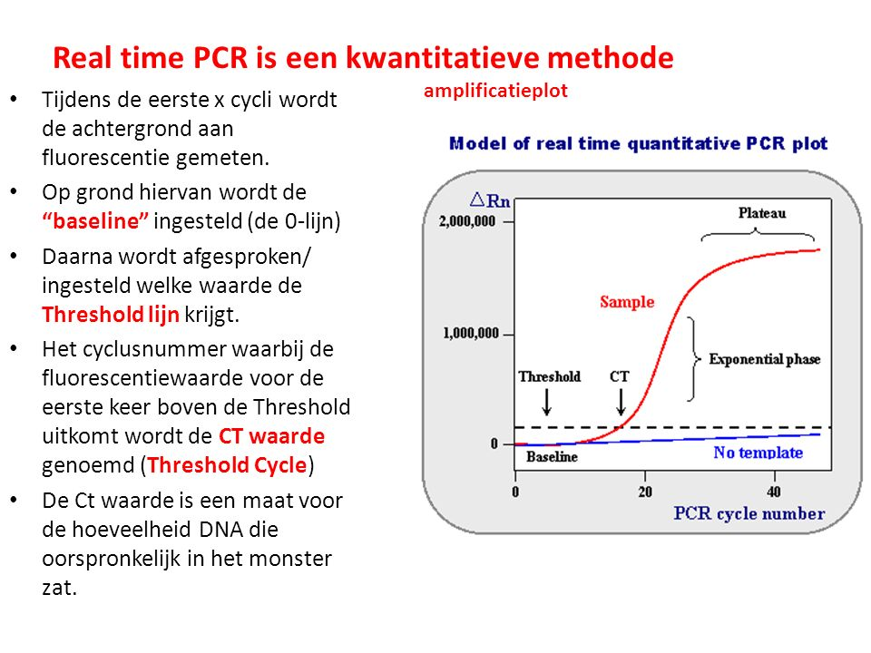 Real time PCR is een kwantitatieve methode