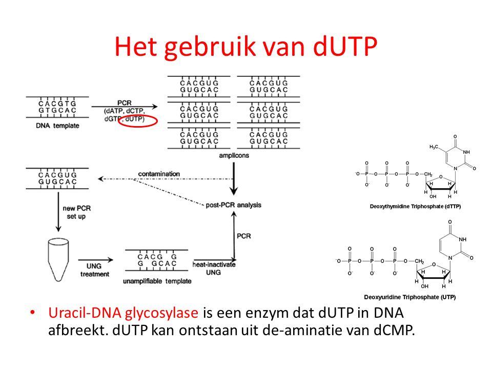 Het gebruik van dUTP Uracil-DNA glycosylase is een enzym dat dUTP in DNA afbreekt.