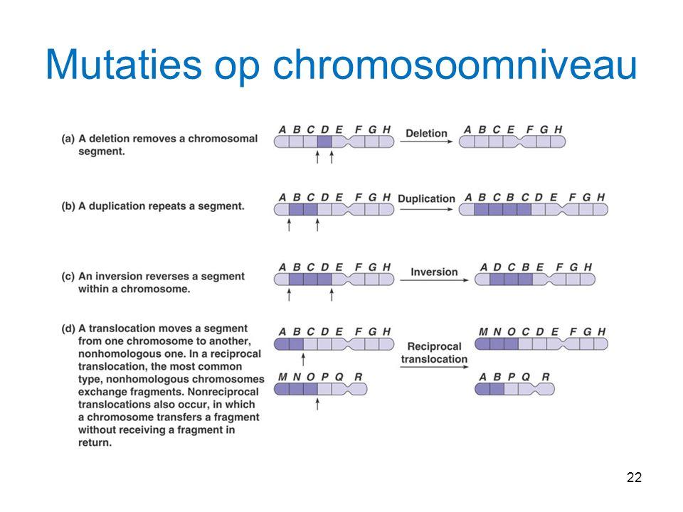 Mutaties op chromosoomniveau