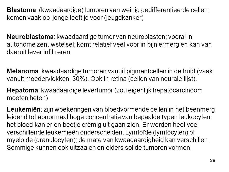 Blastoma: (kwaadaardige) tumoren van weinig gedifferentieerde cellen; komen vaak op jonge leeftijd voor (jeugdkanker)