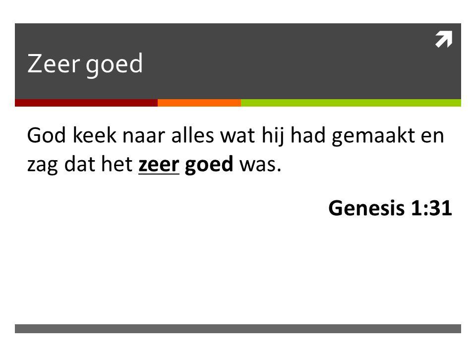 Zeer goed God keek naar alles wat hij had gemaakt en zag dat het zeer goed was. Genesis 1:31