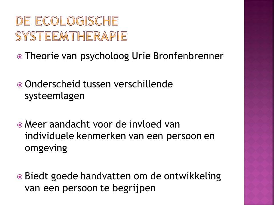 De ecologische systeemtherapie