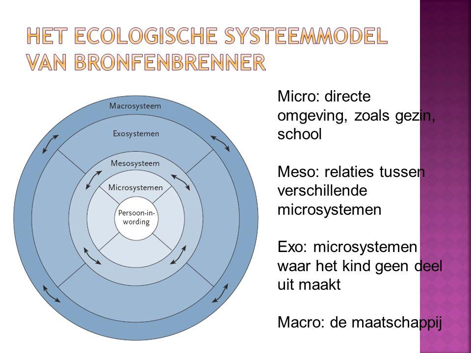 Het ecologische systeemmodel van Bronfenbrenner