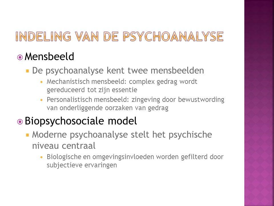 Indeling van de psychoanalyse