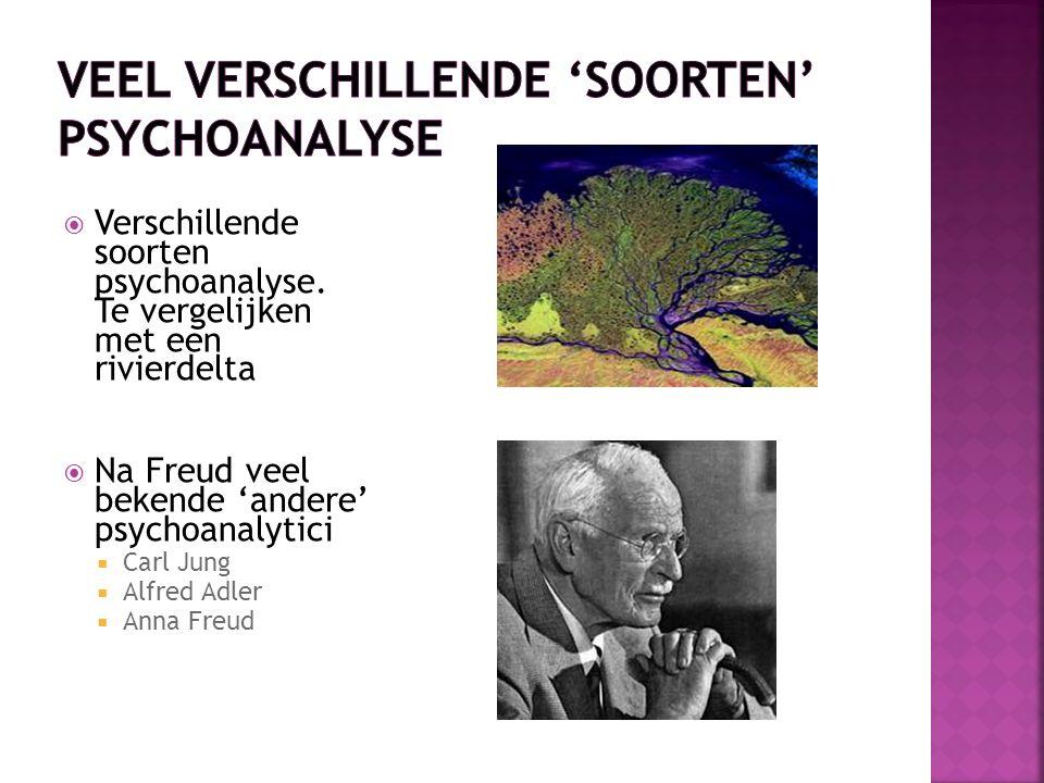 Veel verschillende 'soorten' psychoanalyse