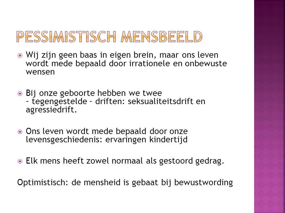 Pessimistisch mensbeeld