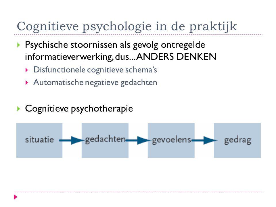 Cognitieve psychologie in de praktijk