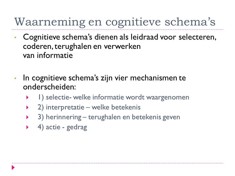 Waarneming en cognitieve schema's