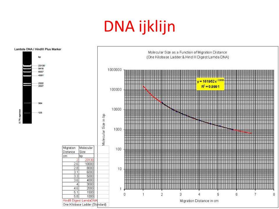 DNA ijklijn