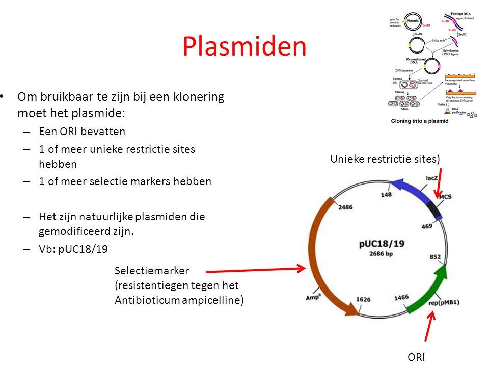 Plasmiden Om bruikbaar te zijn bij een klonering moet het plasmide: