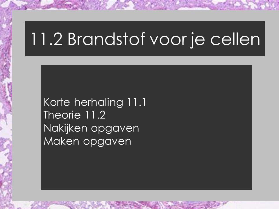 11.2 Brandstof voor je cellen