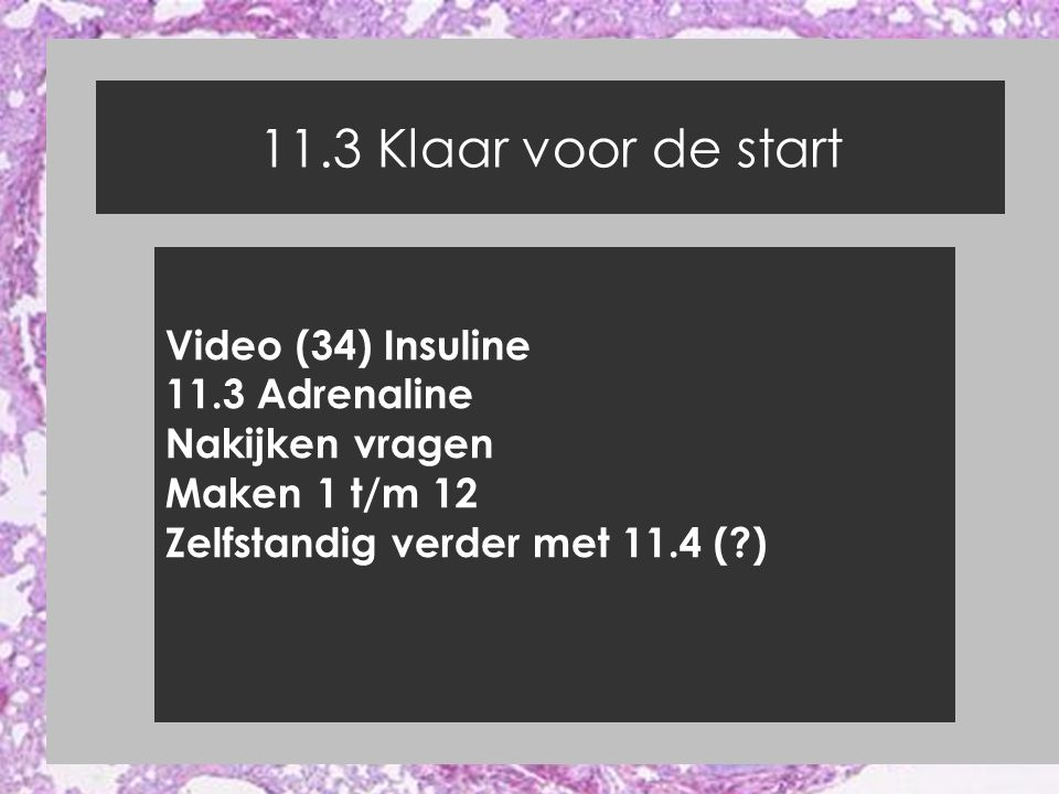 11.3 Klaar voor de start Video (34) Insuline 11.3 Adrenaline