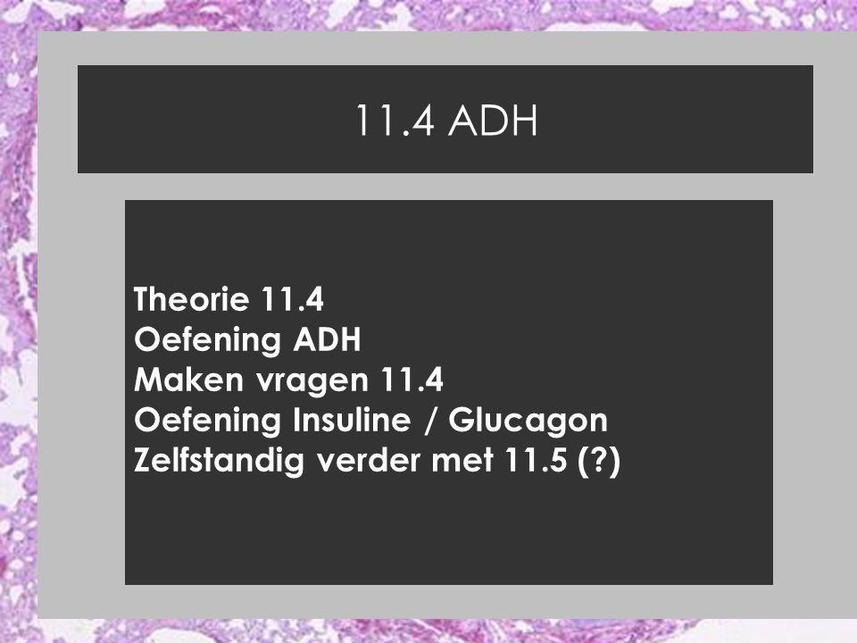 11.4 ADH Theorie 11.4 Oefening ADH Maken vragen 11.4