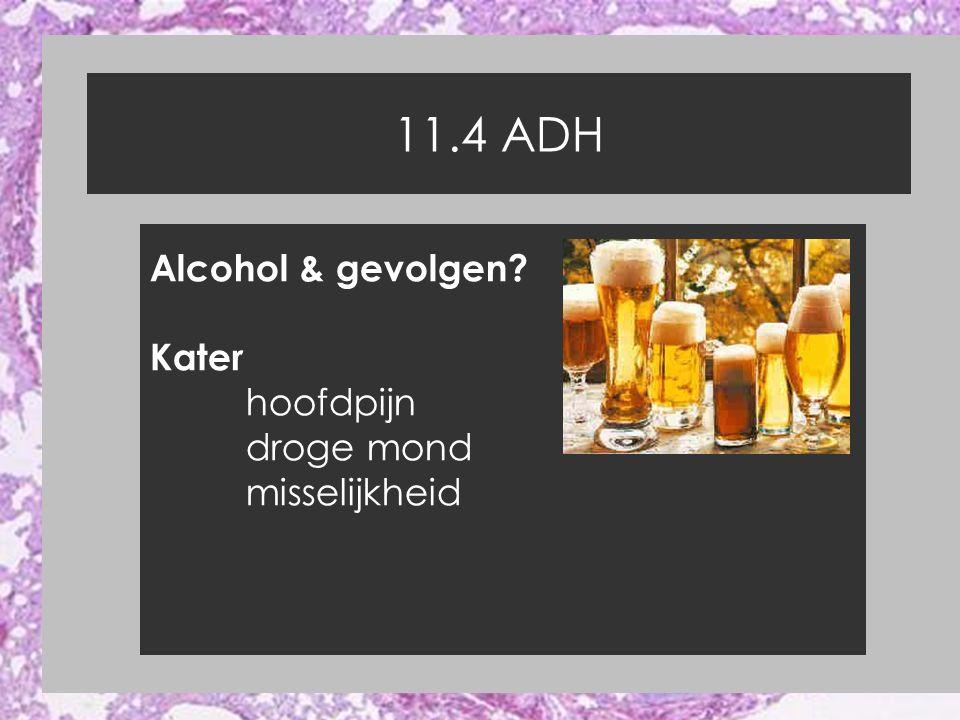 11.4 ADH Alcohol & gevolgen Kater hoofdpijn droge mond misselijkheid