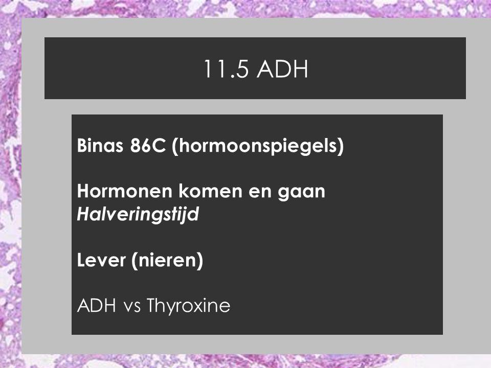 11.5 ADH Binas 86C (hormoonspiegels) Hormonen komen en gaan