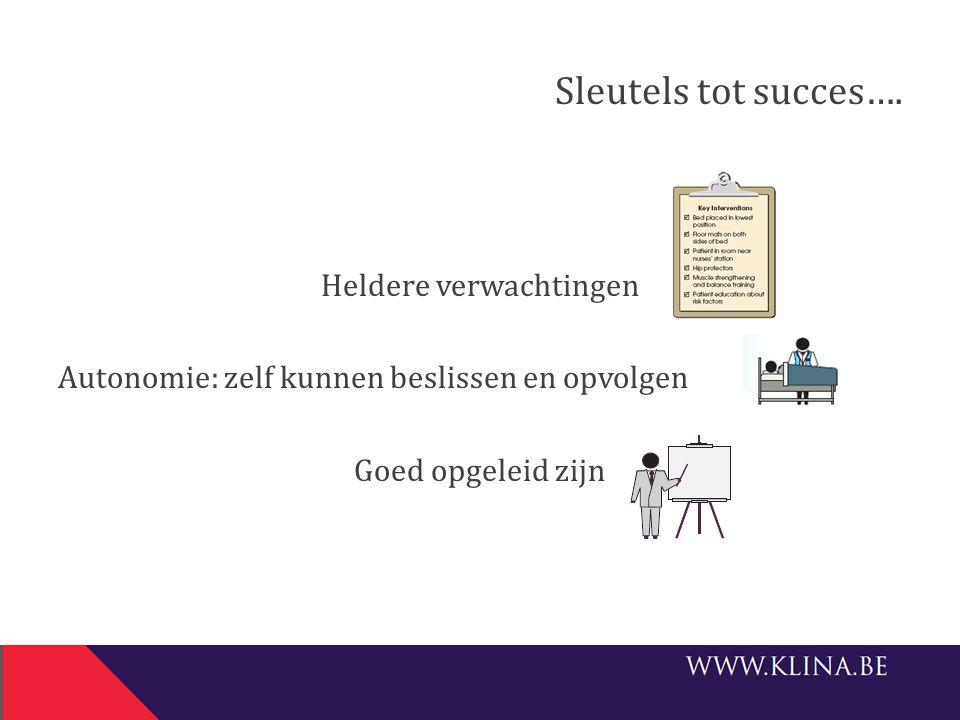 Sleutels tot succes….