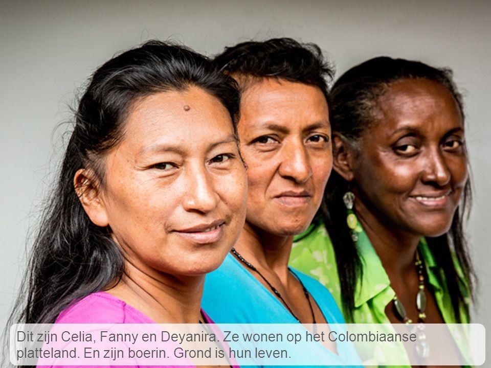 Celia, Fanny en Deyanira wonen op het Colombiaanse platteland