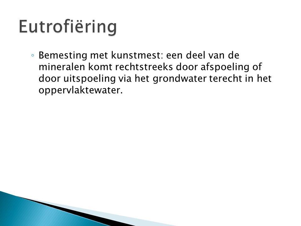 Eutrofiëring