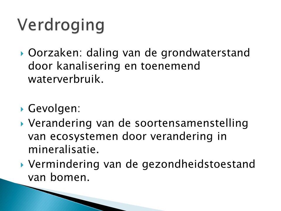 Verdroging Oorzaken: daling van de grondwaterstand door kanalisering en toenemend waterverbruik. Gevolgen: