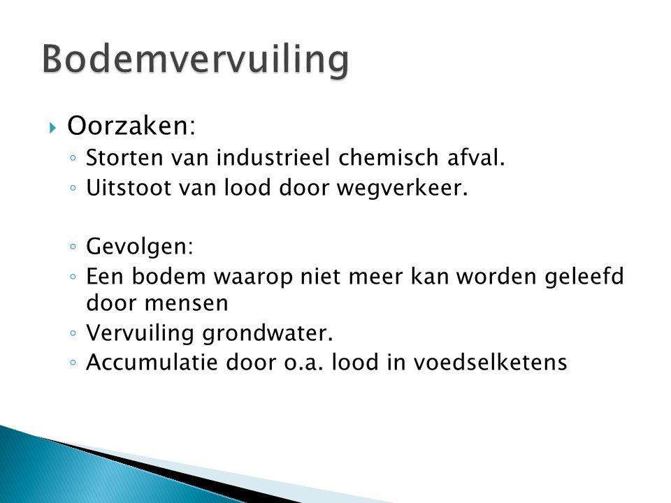 Bodemvervuiling Oorzaken: Storten van industrieel chemisch afval.