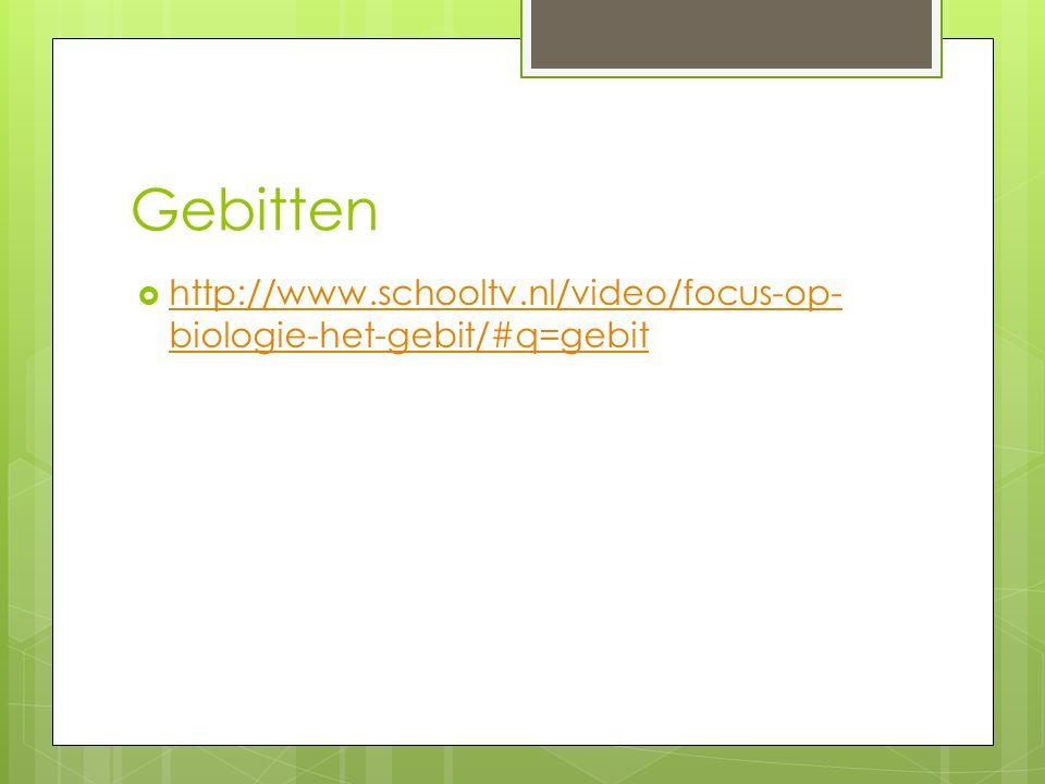 Gebitten http://www.schooltv.nl/video/focus-op-biologie-het-gebit/#q=gebit