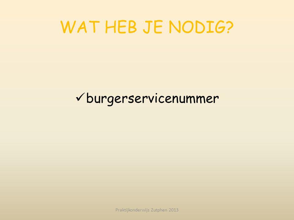 Praktijkonderwijs Zutphen 2013