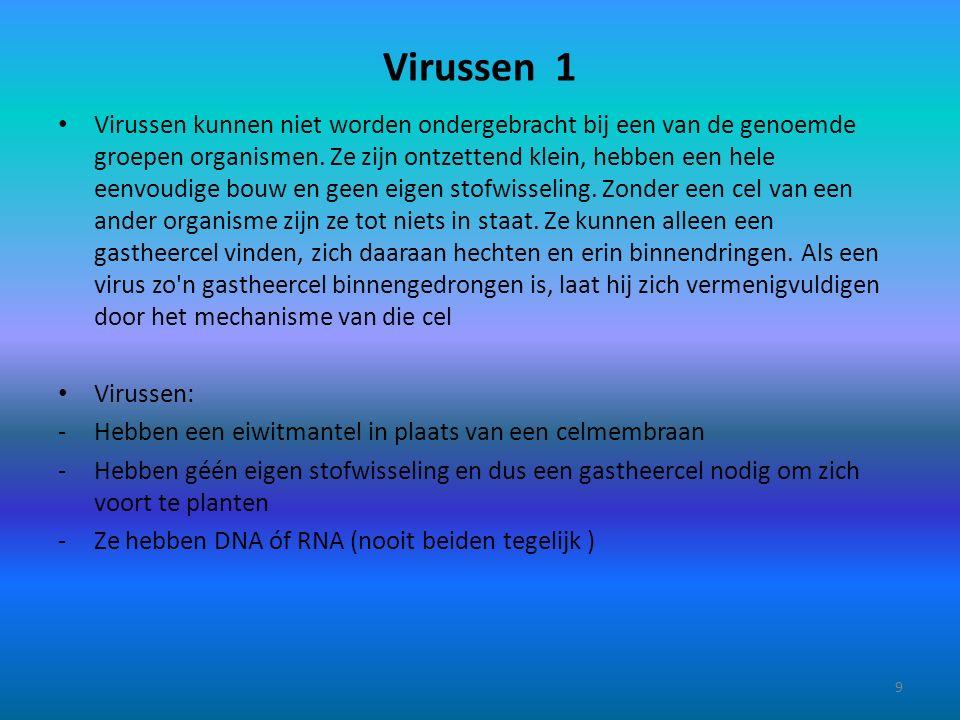 Virussen 1