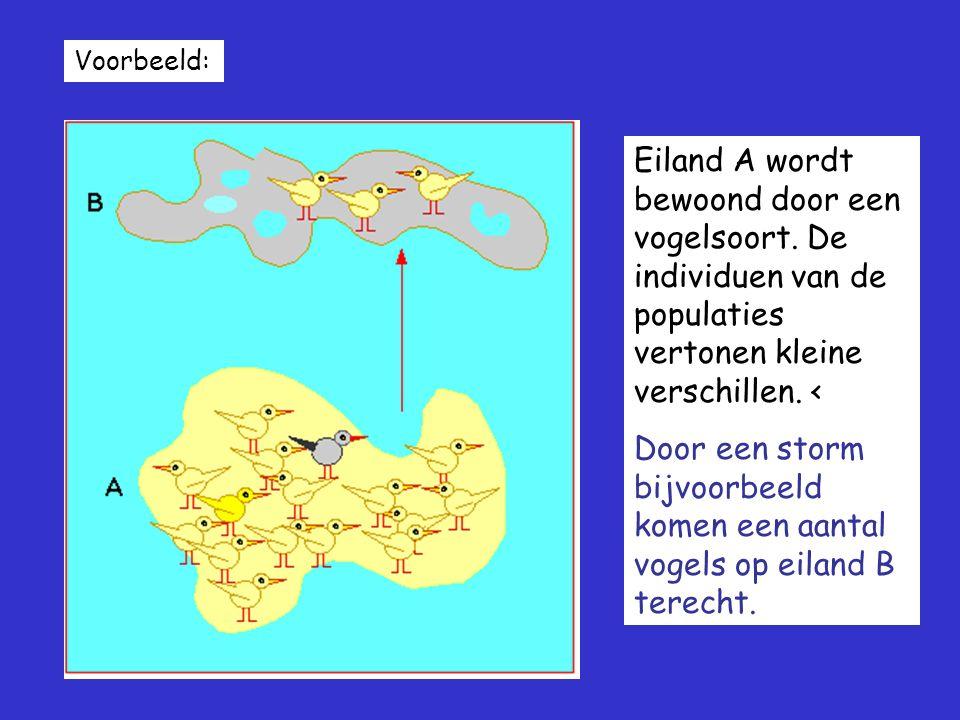 Voorbeeld: Eiland A wordt bewoond door een vogelsoort. De individuen van de populaties vertonen kleine verschillen. <