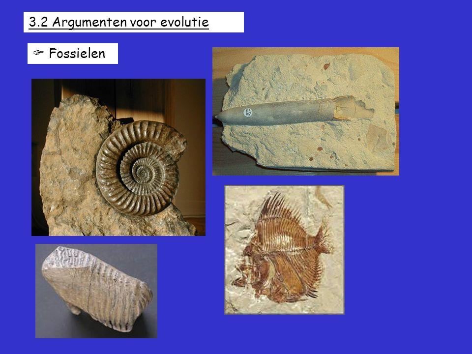 3.2 Argumenten voor evolutie