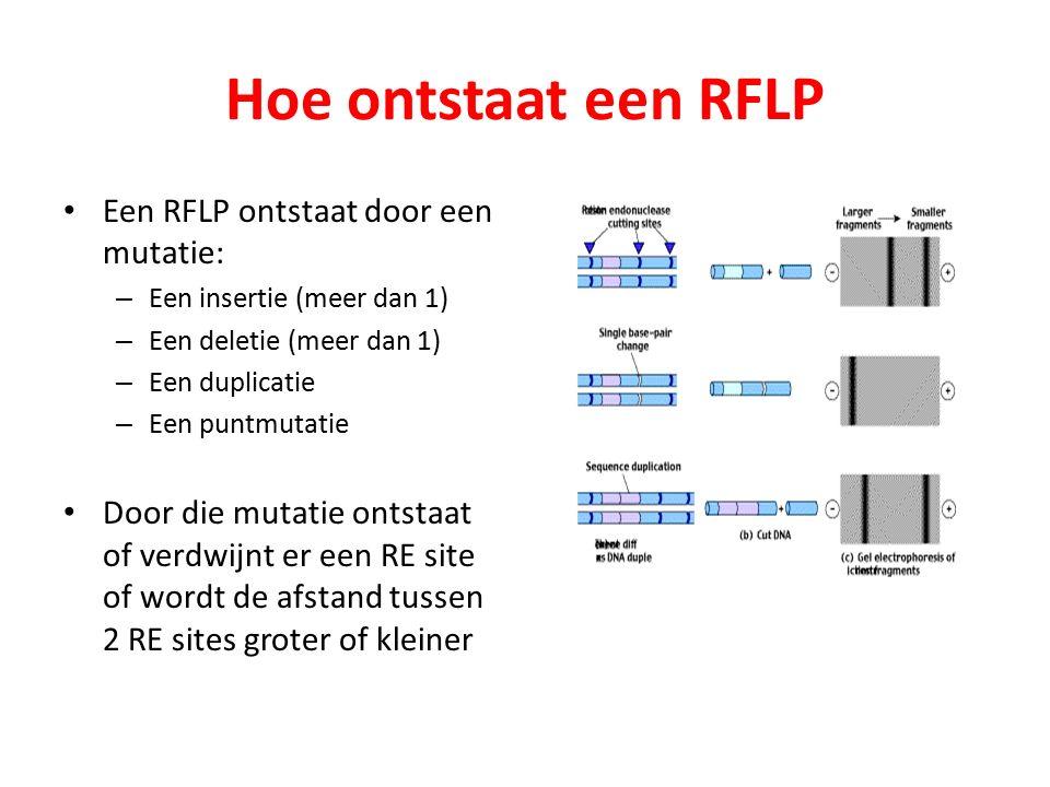 Hoe ontstaat een RFLP Een RFLP ontstaat door een mutatie: