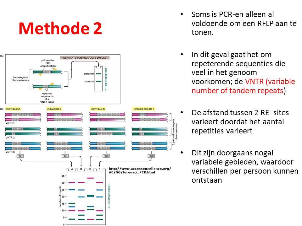 Methode 2 Soms is PCR-en alleen al voldoende om een RFLP aan te tonen.