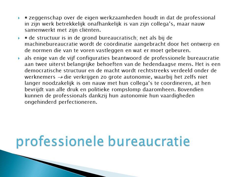 professionele bureaucratie