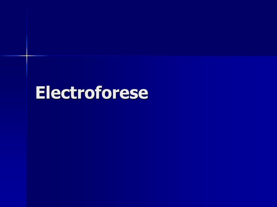 Electroforese