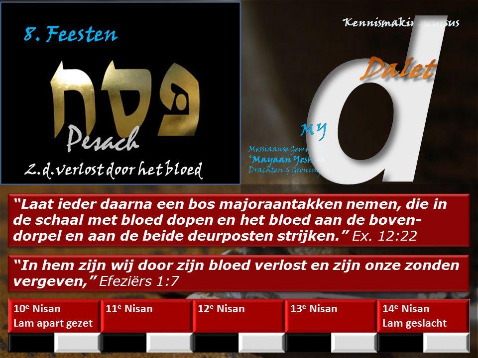 8. Feesten 2.d.verlost door het bloed