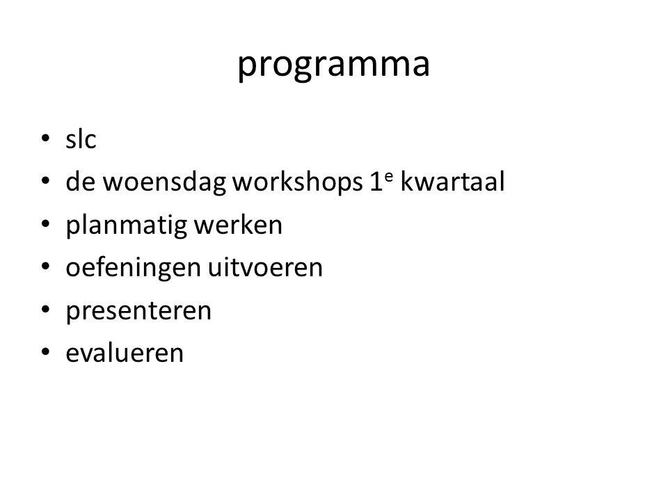 programma slc de woensdag workshops 1e kwartaal planmatig werken