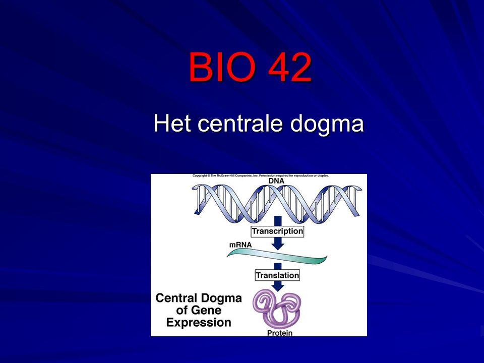 BIO 42 Het centrale dogma