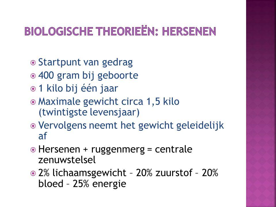 Biologische theorieën: hersenen